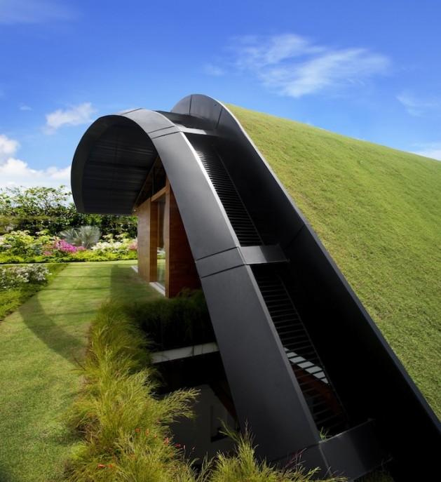 Gazon toit maison for Maison avec toit vegetal