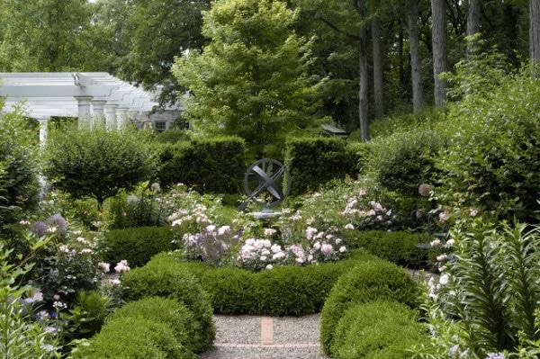 amenagement-jardin-buis