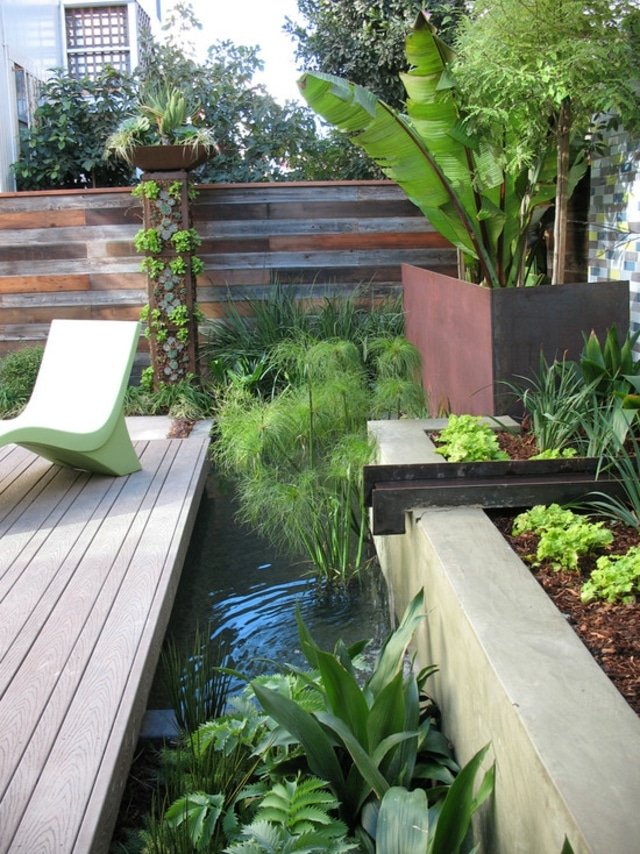 Cr er un bassin contemporain dans votre jardin for Plante contemporaine