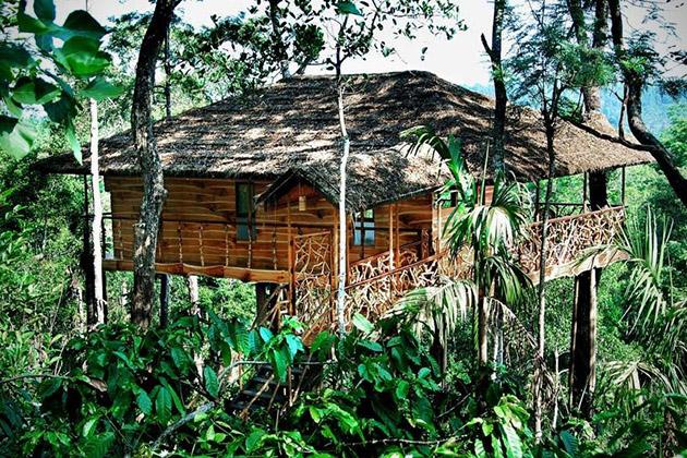 hotelTranquil-Resort-inde