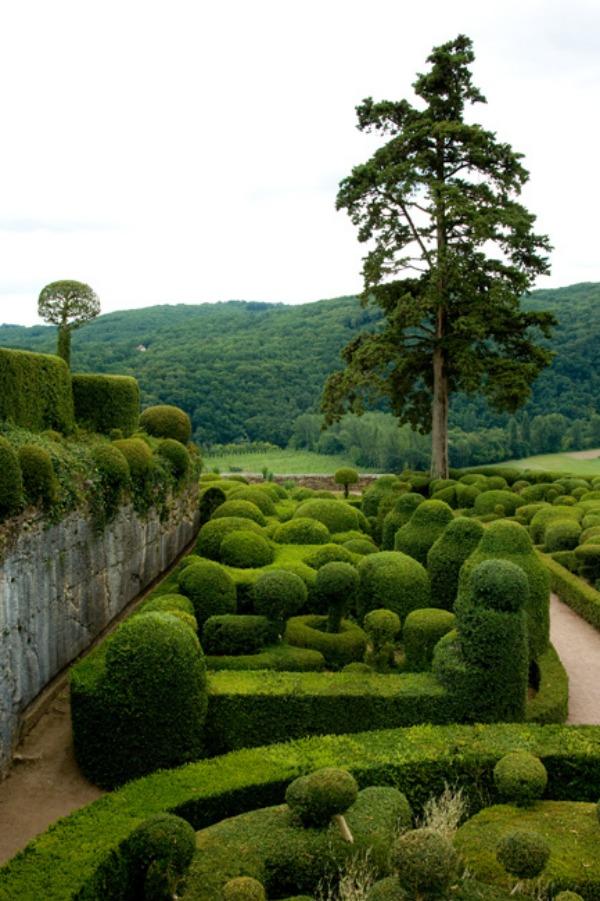 jardin-anglaise-buis