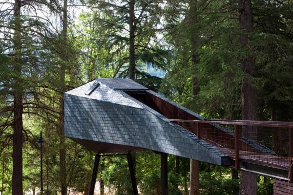 maison-design-arbre
