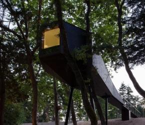 maison-design-modulaire-arbre
