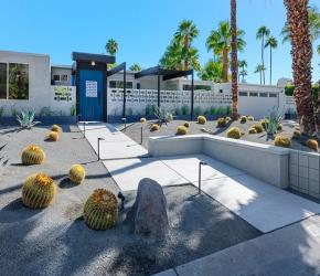 Jardin avec cactus