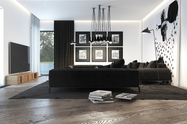 d coration salon noir et blanc. Black Bedroom Furniture Sets. Home Design Ideas