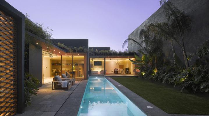 D coration int rieure ext rieure d 39 une maison avec plantes for Maison avec toit vegetal