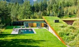 Maison contemporaine avec toit végétalisé