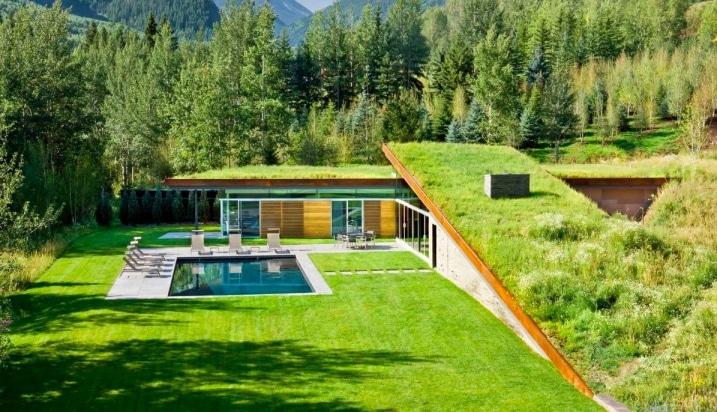 Maison contemporaine avec toiture végétalisée