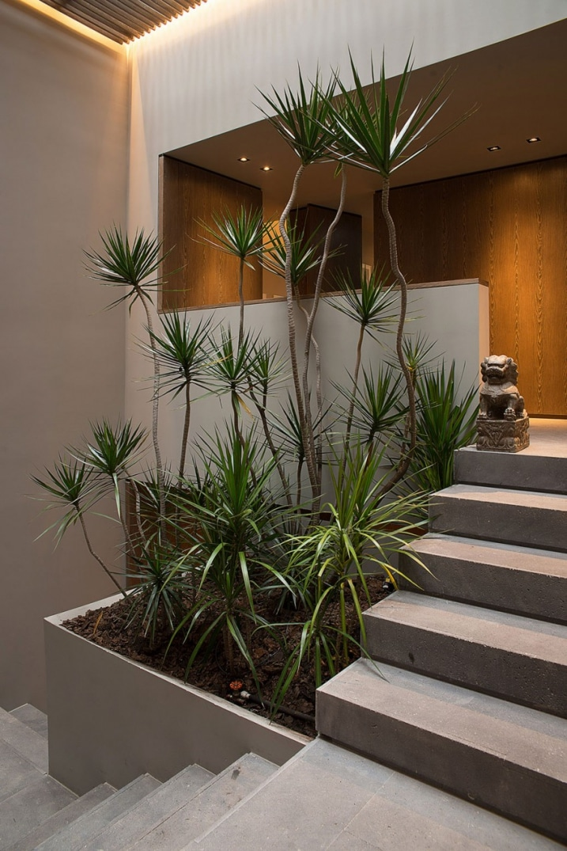 Petit jardin d 39 int rieur - Jardineras en escalera ...