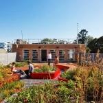 Jardin contemporain rooftop