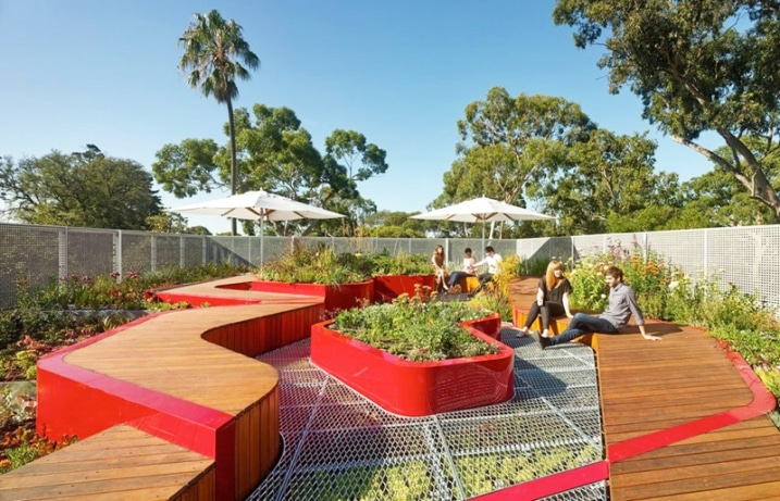 Jardin écologique sur rooftop