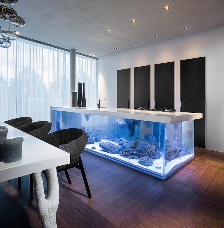 Aquarium dans cuisine