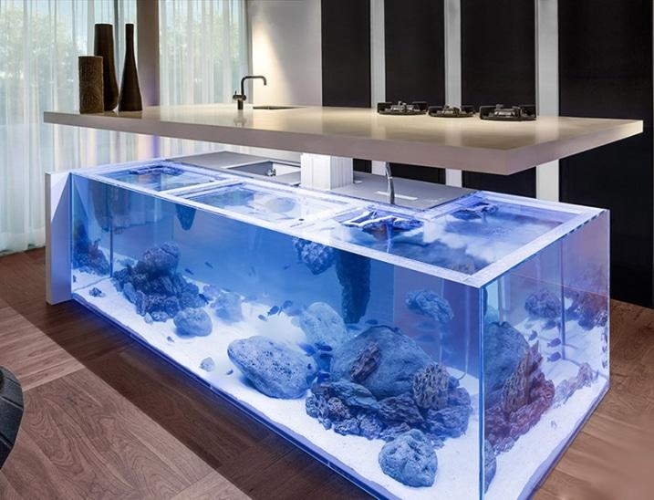 Aquarium géant