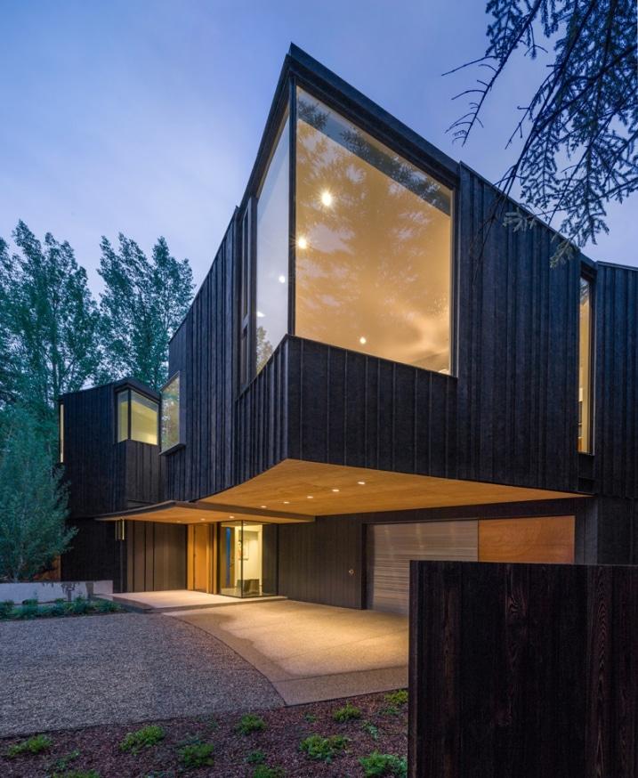 Bardage bois noir for Revestimiento exterior zinc