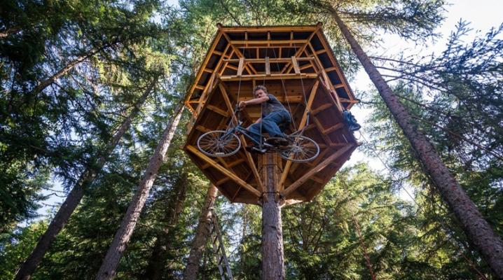 Comment cr er une cabane insolite dans un arbre - Cabane en bois dans les arbres ...