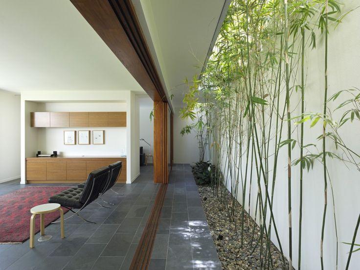 Rangé de bambous