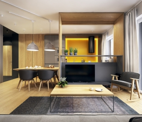 Superieur Appartement Scandinave Ingenieux