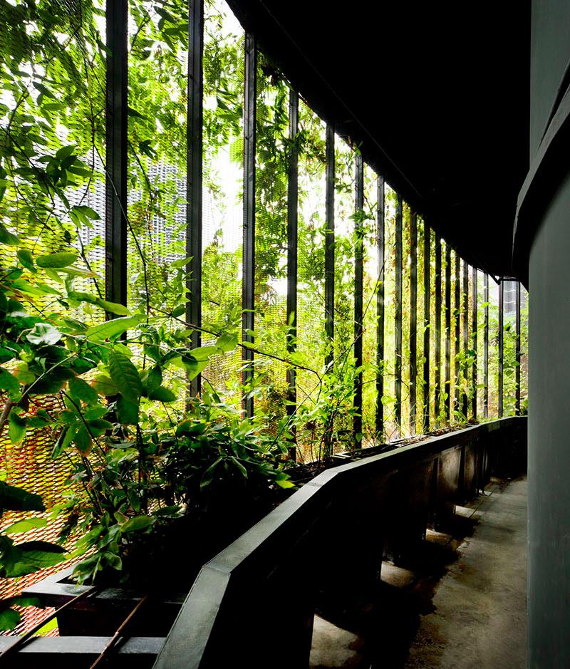 murs-vegetalise