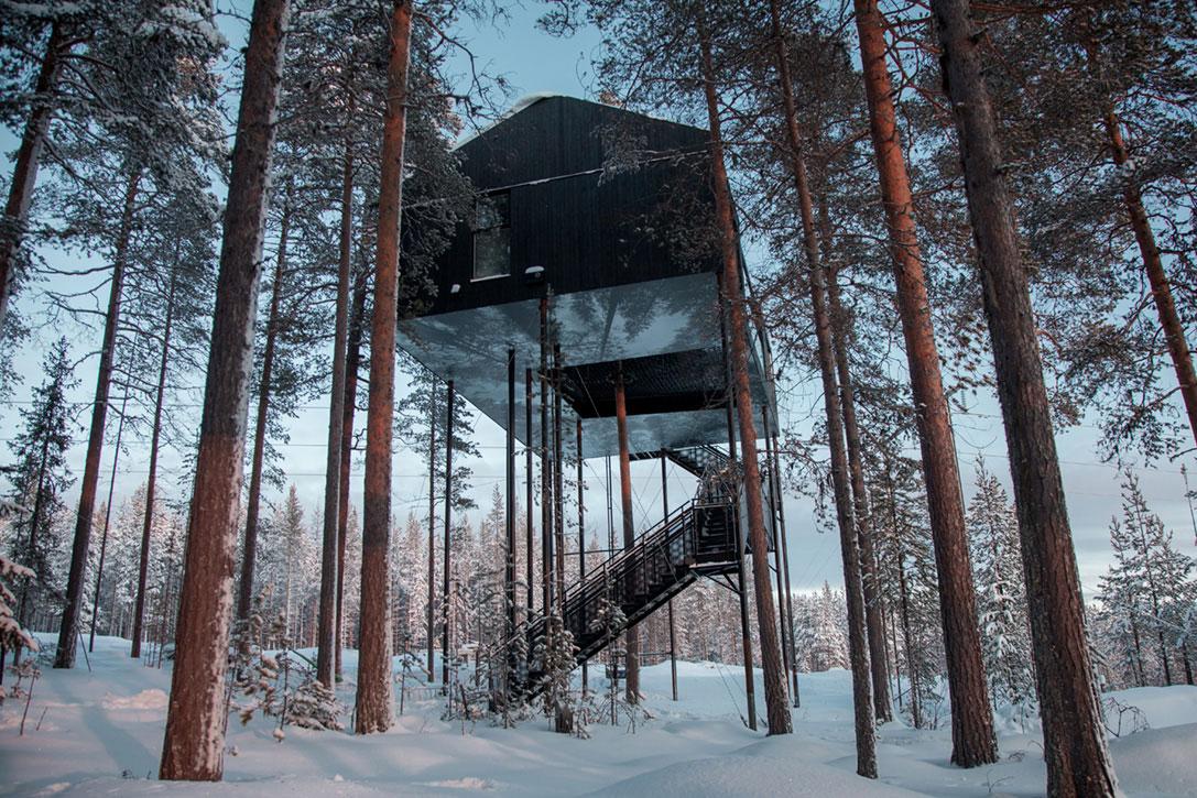 hotel-contemporain-arbre
