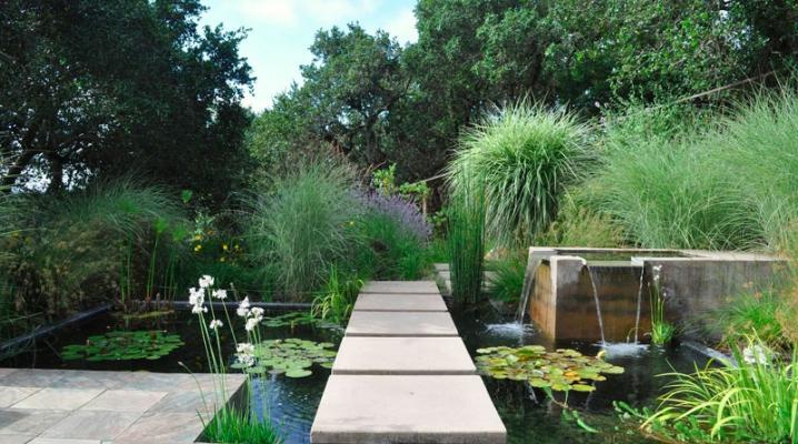 bassin de jardin 8 id es pour cr er un bassin aquatique. Black Bedroom Furniture Sets. Home Design Ideas