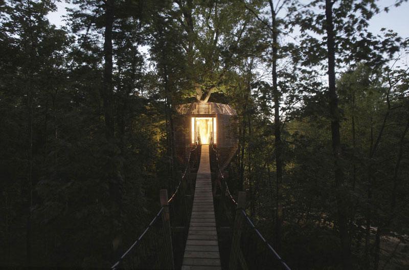 passerelle-cabane-arbre