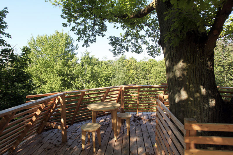rooftop-cabane-bois