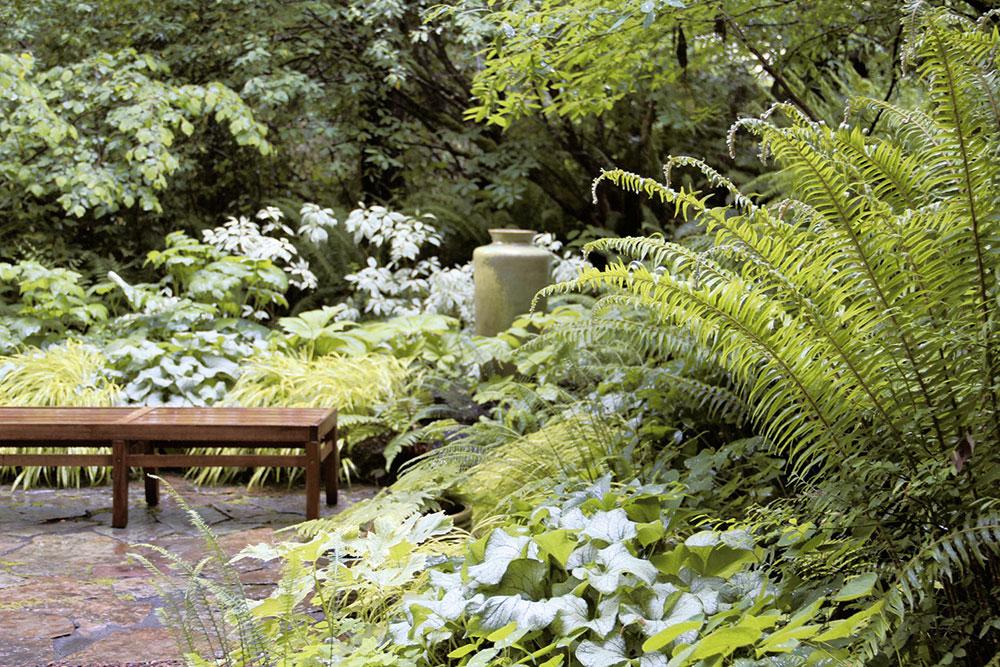 fougeres-jardin