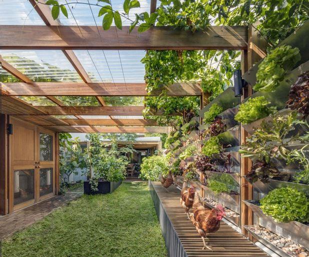 jardin-autosuffisant