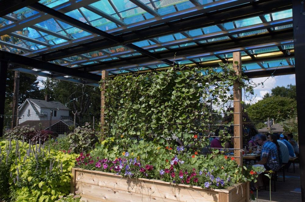 jardin-ecologique