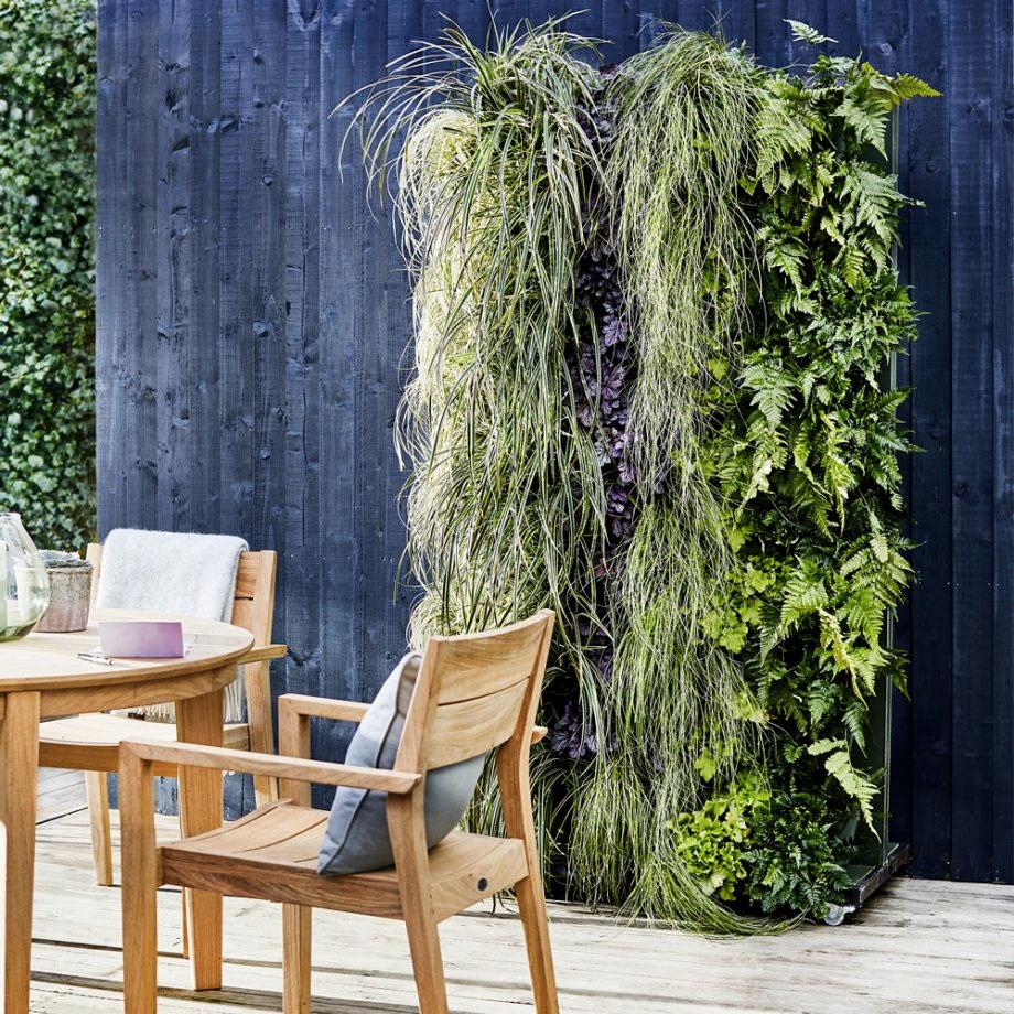 plantes-verticales