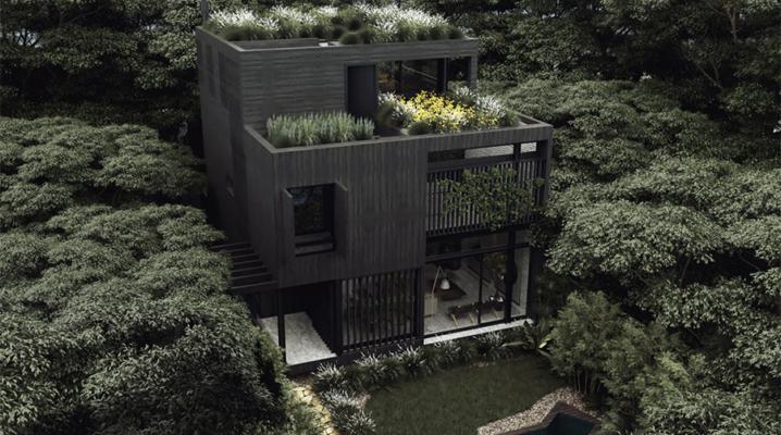 maison-urbaine-noire