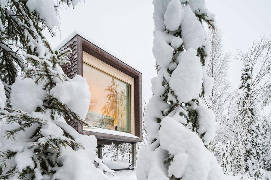 arctic-treehouse