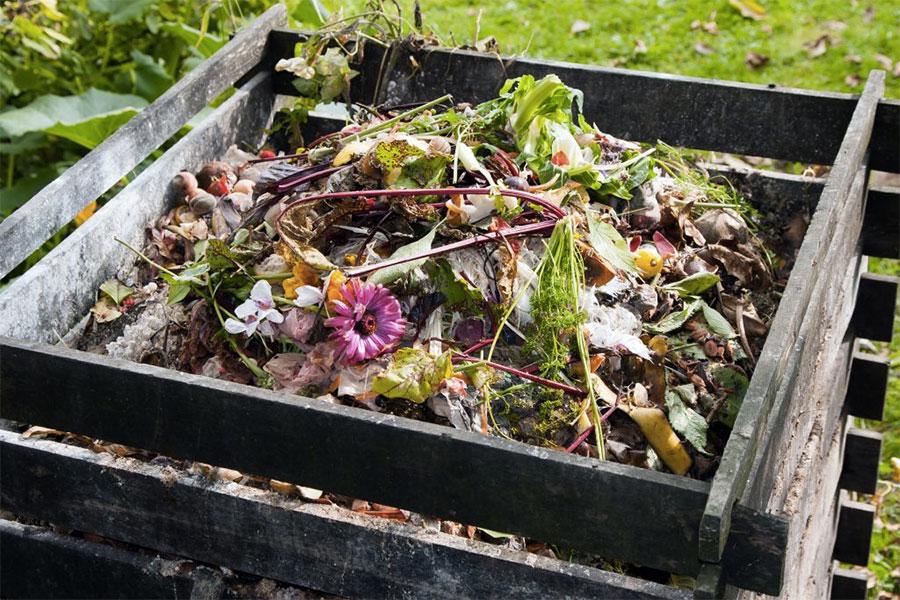 composteur-jardin